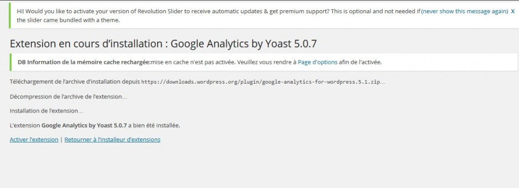 Installation de l'extension google analytics en cours