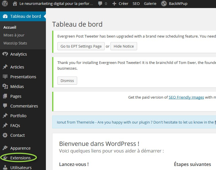 extension menu pour wordpress